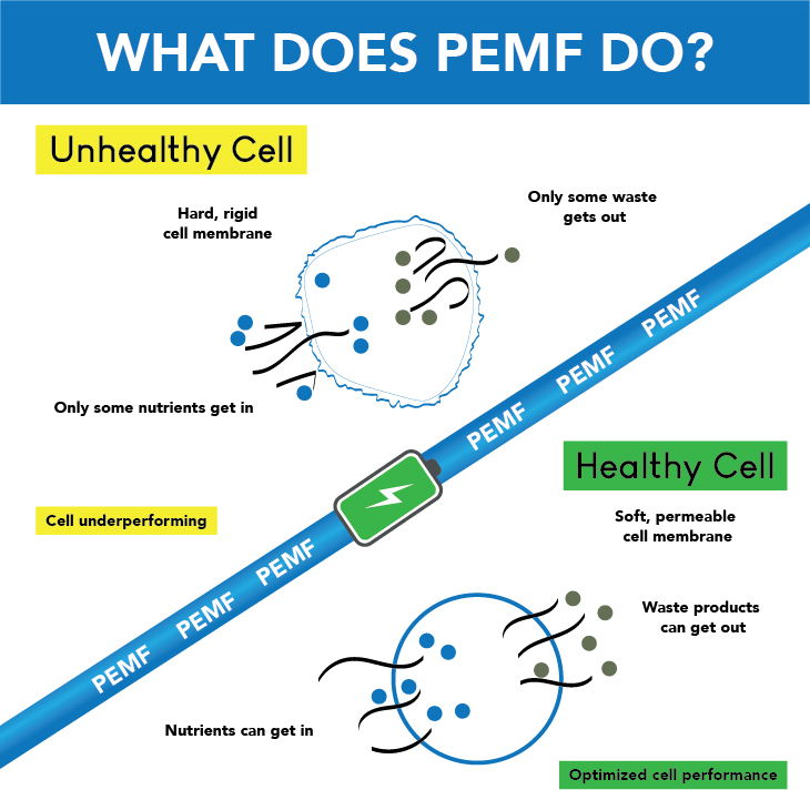 P.E.M.F and Infrared Therapy 2